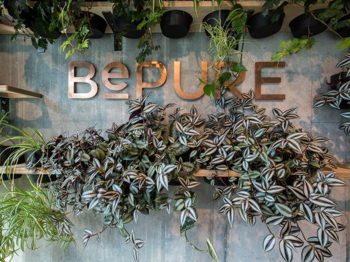 Be Pure, Ponsonby